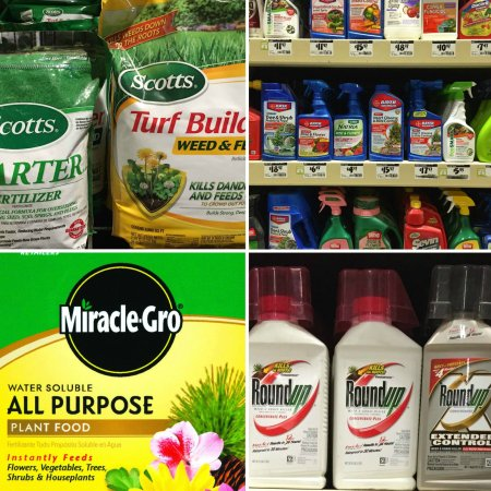carcinogenic pesticides, toxic fertilizer, wecologist, wecology, cancer causing chemicals, prevent cancer, reduce toxins, protect bees, environmental health