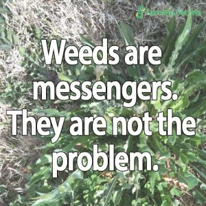 weeds-are-messengers