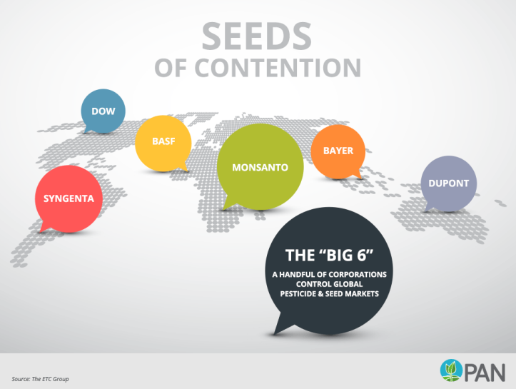 big-6-global-seed-market