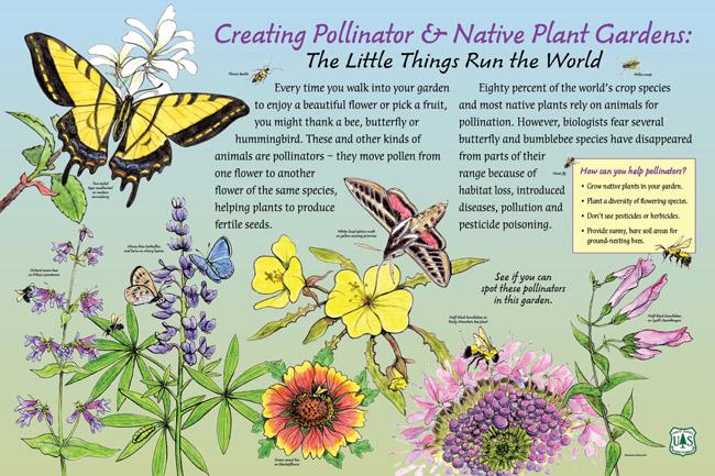 PollinatorPanel_Hi-NoCrops-main